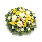 Posy  Yellow and White
