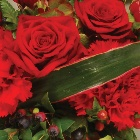 Wreath Leaf Edging Red and Green